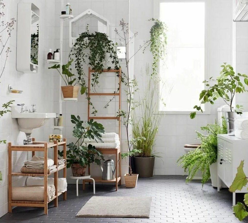 Зеленые растения и цветы в ванной комнате